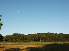 Hamlin Salt Marsh moon