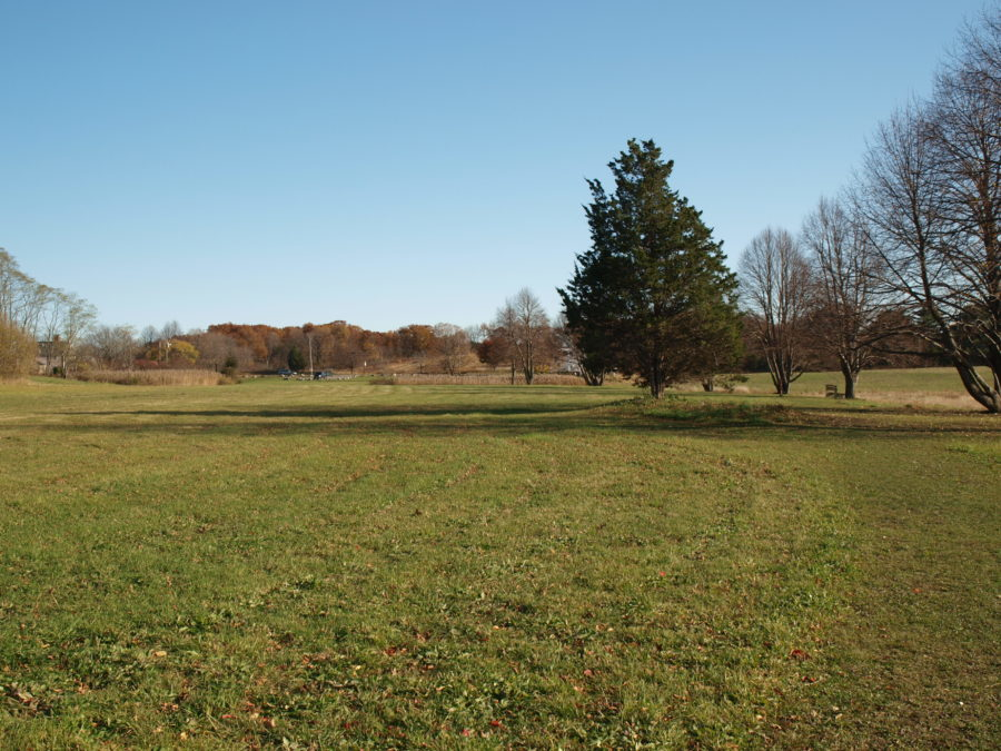 Straw hill grass