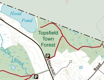 TopsfieldTownForest
