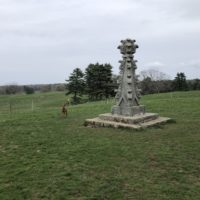 Appleton Grass Rides/Hamilton