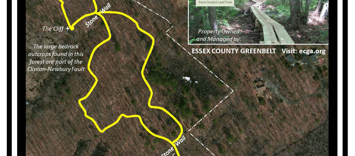 South St Woodlots Trail image