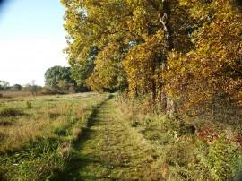 Hamlin Trail 2