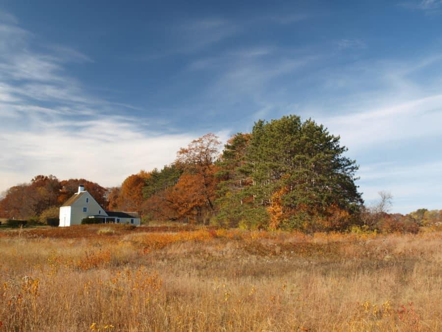 Payne House sky