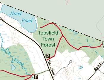TopsfieldTownForest