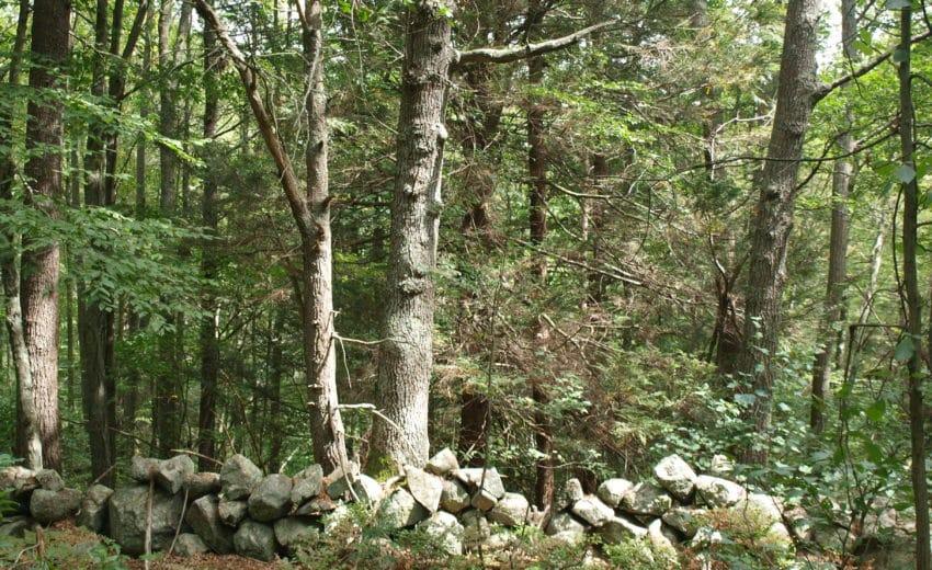 Weld Stone Wall